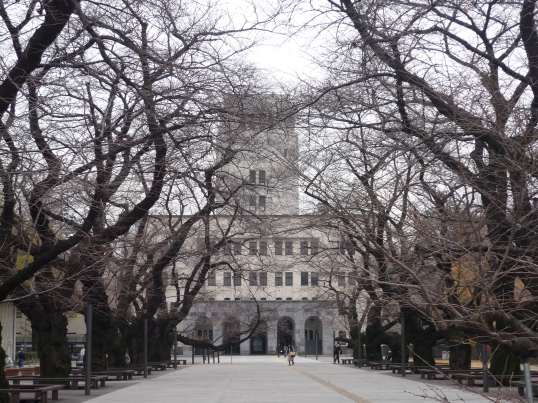 Sakura in front of Tokyo Tech Main Building